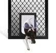 diamond pet door